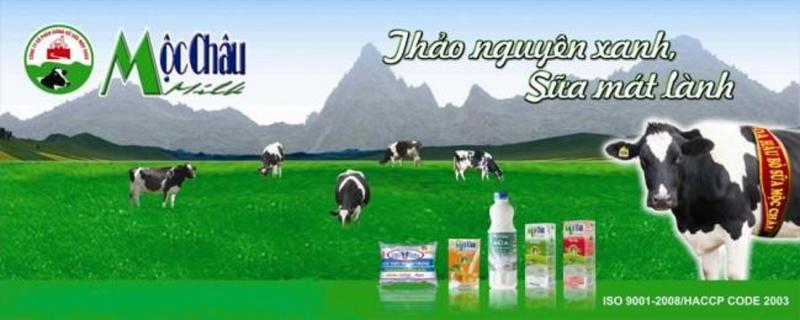 Các loại sản phẩm sữa tươi