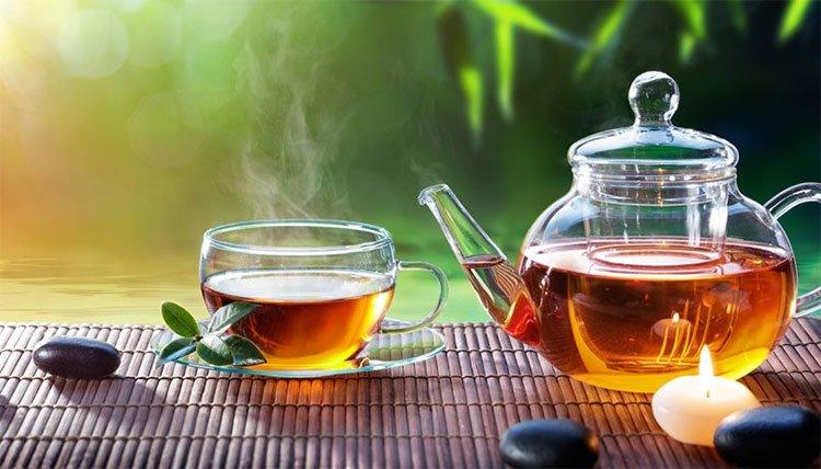 Polyphenol EGCG trong trà có hiệu quả ngăn chặn sự lây lan của virus HIV trong cơ thể người