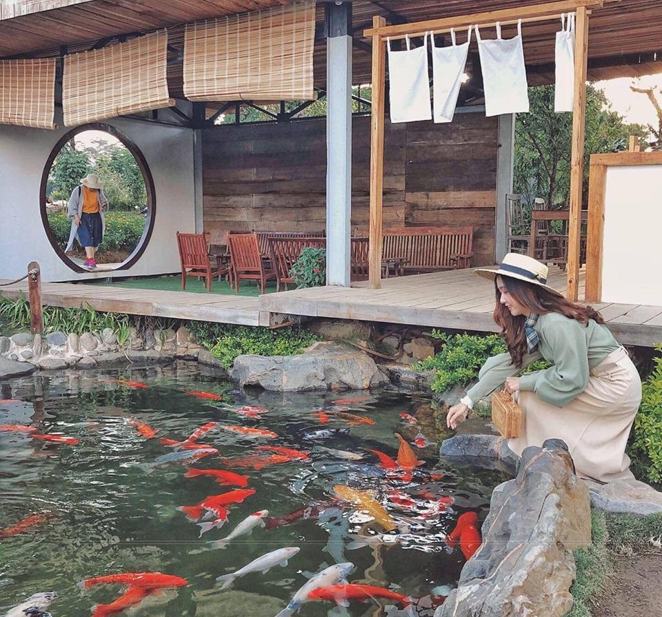 Quán cafe sân vườn phong cách Nhật Bản